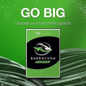 go big barracuda